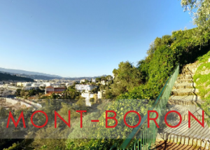 immobilier_mont_boron_nice.png